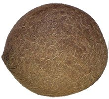 Nirav Dry Coconut (Whole) -  1 pc