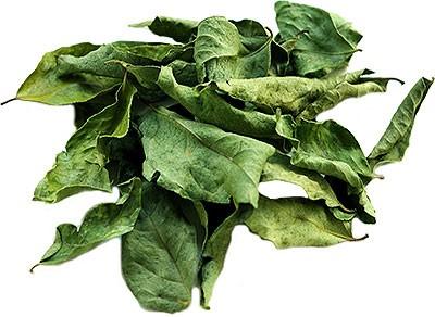 Nirav Dry Curry Leaves