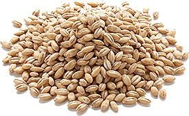 Nirav Barley Whole