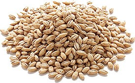 Fyve Elements Barley